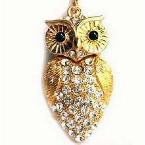 Owl Necklace & Flashdrive